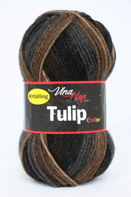 TULIP COLOR 5204